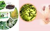Stonebye và những lợi ích thiết thực với bệnh viêm đường tiết niệu
