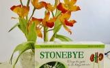 Làm thế nào để nhận biết Stonebye chính hãng?