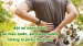 Bật mí cách chữa sỏi niệu quản, sỏi bàng quang không lo phẫu thuật sỏi